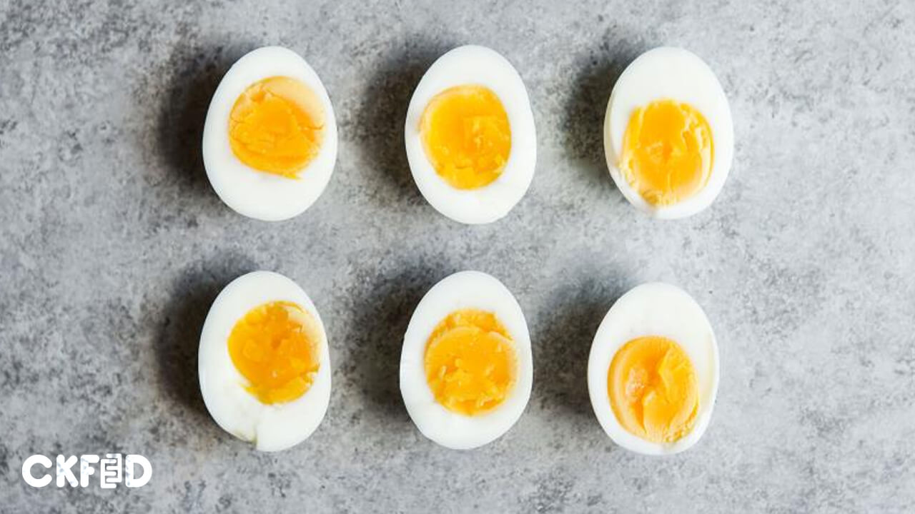 Yumurtaya Zam Geliyor: Stoklar Azalmaya Başladı!