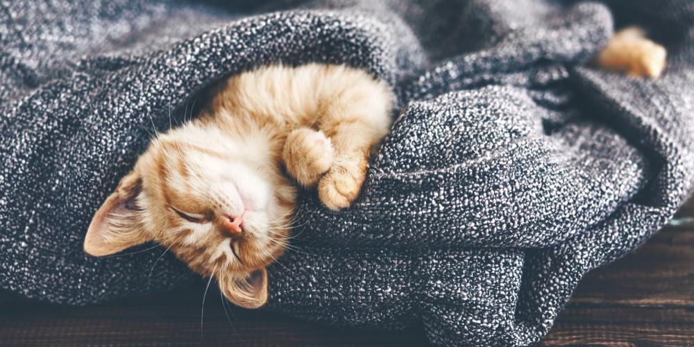 Sağlıklı Uyku için 9 İpucu